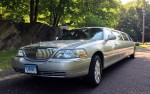 Silver Stretch Limousine - Front